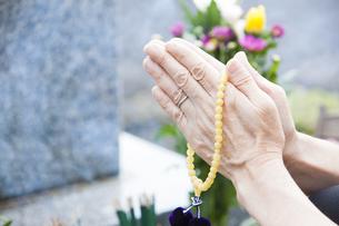 お墓に手を合わせる女性の写真素材 [FYI04598692]
