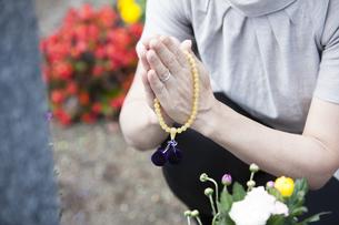お墓に手を合わせる女性の写真素材 [FYI04598712]