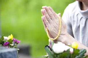お墓に手を合わせる女性の写真素材 [FYI04598718]