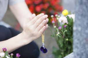 お墓に手を合わせる女性の写真素材 [FYI04598721]