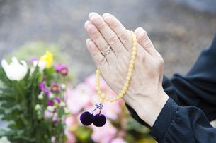 お墓に手を合わせる女性の写真素材 [FYI04598806]