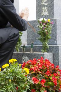 お墓に手を合わせる男性の写真素材 [FYI04598824]
