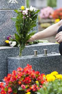 お墓に花を供える女性の写真素材 [FYI04598875]