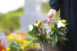 手桶に入った仏花を持つ女性の写真素材 [FYI04598885]