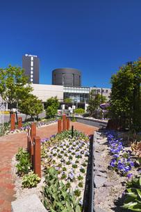 函館駅と駅前広場の花壇の写真素材 [FYI04599148]