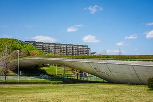 快晴の稲城中央公園で船底曲線が美しい「くじら橋」を一望の写真素材 [FYI04599522]