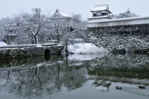 雪の福岡城址の写真素材 [FYI04599590]