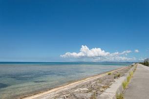 快晴の青空に白い雲と遠浅の海岸と遊歩道の写真素材 [FYI04599805]
