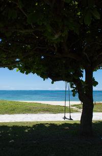 緑の芝生に木陰のある木のブランコとエメラルドグリーンの海の写真素材 [FYI04599812]