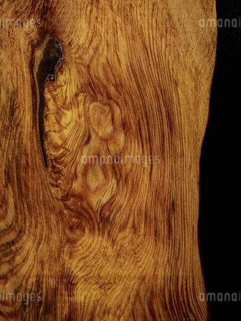 屋久杉の木目の写真素材 [FYI04600123]