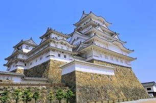 姫路城と青空の写真素材 [FYI04600347]