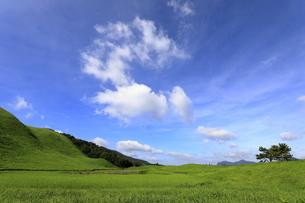 初秋の曽爾高原の写真素材 [FYI04600702]