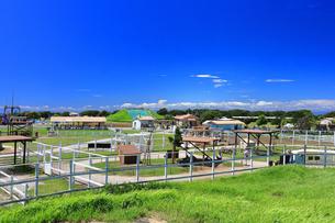 ソレイユの丘(長井海の手公園)の写真素材 [FYI04600792]