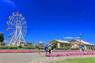 ソレイユの丘(長井海の手公園)の写真素材 [FYI04600812]