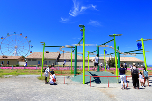 ソレイユの丘(長井海の手公園)の写真素材 [FYI04600813]