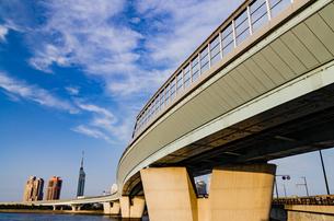 福岡タワー遠望の写真素材 [FYI04601001]