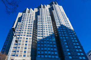 新宿中央公園前の公園通りから青空にそびえる東京都庁舎(東京都庁第二本庁舎)の写真素材 [FYI04601176]