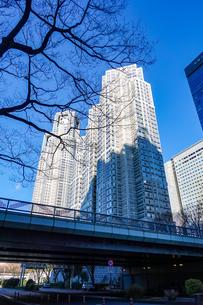 公園通りに架かる角筈橋(つのはずばし)から青空にそびえる東京都庁舎の写真素材 [FYI04601177]