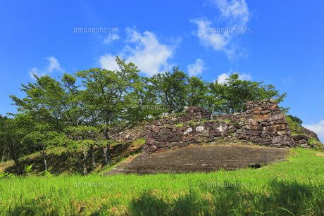国の史跡 赤木城跡の写真素材 [FYI04601279]