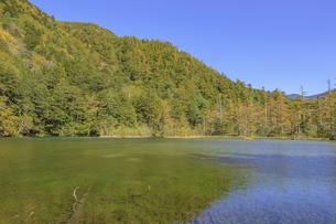 秋の上高地 明神池 長野県松本市の写真素材 [FYI04601464]