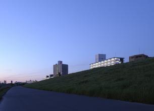 夜明けの荒川土手と集合住宅の灯りの写真素材 [FYI04601487]