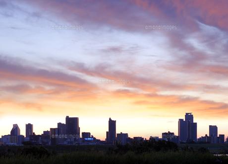 荒川土手から見る朝焼けの川口市の高層タワーマンション群の写真素材 [FYI04601491]