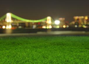 夜の草地とレインボーブリッジの写真素材 [FYI04601503]