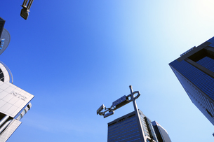 見上げる青空と高層ビルの写真素材 [FYI04601509]
