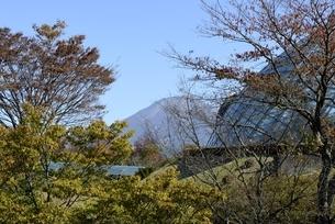 青空のとっとり花回廊,フラワードームと大山の写真素材 [FYI04601979]
