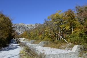 青空と紅葉の三の沢から大山の写真素材 [FYI04602039]