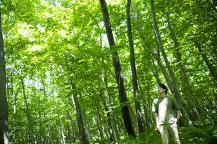 森林浴をするミドルの男性の写真素材 [FYI04602056]