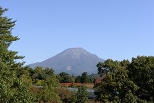 とっとり花回廊から青空の大山の写真素材 [FYI04602067]
