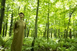 森林浴をするミドルの女性の写真素材 [FYI04602204]