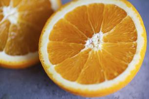 オレンジ アップの写真素材 [FYI04602241]