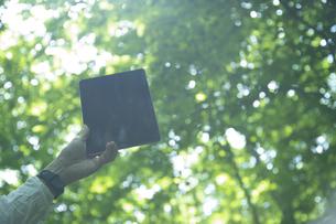 森の中でタブレットPCを持つミドル男性の手元の写真素材 [FYI04602289]