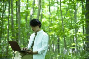 森の中で仕事をするミドルの男性の写真素材 [FYI04602347]