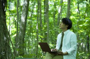 森の中で仕事をするミドルの男性の写真素材 [FYI04602348]