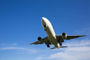 飛行機の写真素材 [FYI04602349]