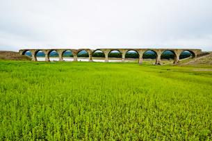 タウシュベツ川橋梁/上士幌の写真素材 [FYI04602421]