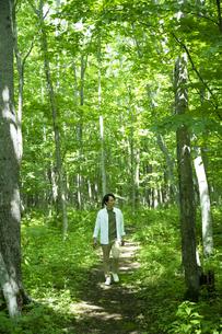 森林浴をするミドルの男性の写真素材 [FYI04602479]