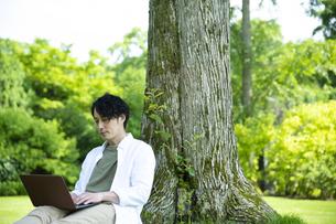 芝生の上で仕事をするミドルの男性の写真素材 [FYI04602510]