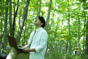 森の中で仕事をするミドルの男性の写真素材 [FYI04602520]