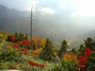 志賀高原の秋の写真素材 [FYI04602579]