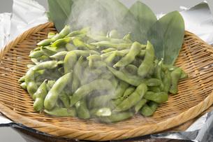 茹であがった枝豆の写真素材 [FYI04602706]