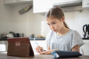 タブレットを見ながら勉強をしている女の子の写真素材 [FYI04602724]