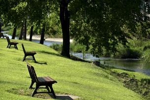 公園ベンチの写真素材 [FYI04603069]