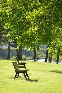 公園 ベンチの写真素材 [FYI04603071]