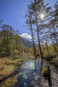 秋の上高地 岳沢湿原 長野県松本市の写真素材 [FYI04603076]