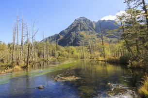 秋の上高地 岳沢湿原 長野県松本市の写真素材 [FYI04603077]