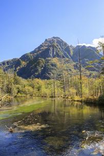 秋の上高地 岳沢湿原 長野県松本市の写真素材 [FYI04603079]